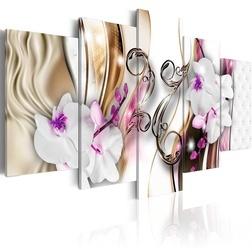 Kép - Orchids: pink flowers