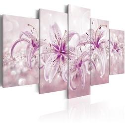 Kép - Purple Harmony
