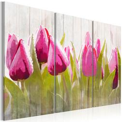 Kép - Spring bouquet of tulips