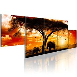 Kép - Vörös naplemente - Afrika