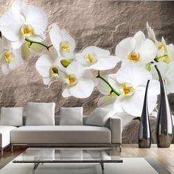 Fotótapéta - Purity of the orchid