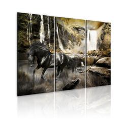 Kép - Black horse and rocky waterfall