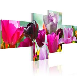 Kép - Charming red tulips