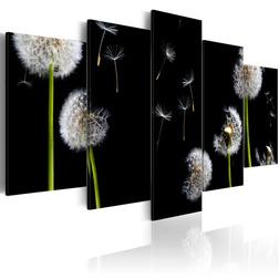 Kép - Dandelion- towards freedom