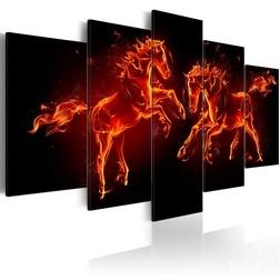 Kép - Fiery Horses