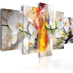 Kép - Orchid And Colors