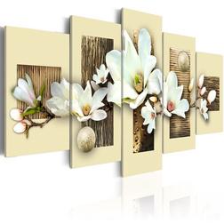 Kép - Texture and magnolia