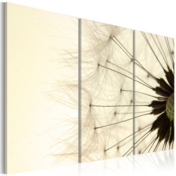 Kép - The lightness and the transience of a dandelion