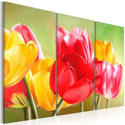 Kép - Tulipán virágzik újra ...