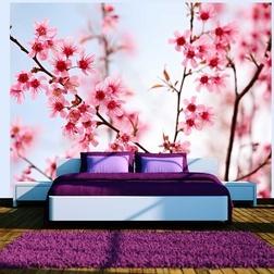 Fotótapéta - Symbol of Japan - Sakura virág