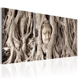 Kép - Meditation's Tree