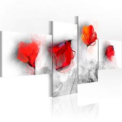 Kép - Sentimental poppies