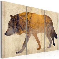 Kép - The Wandering Wolf