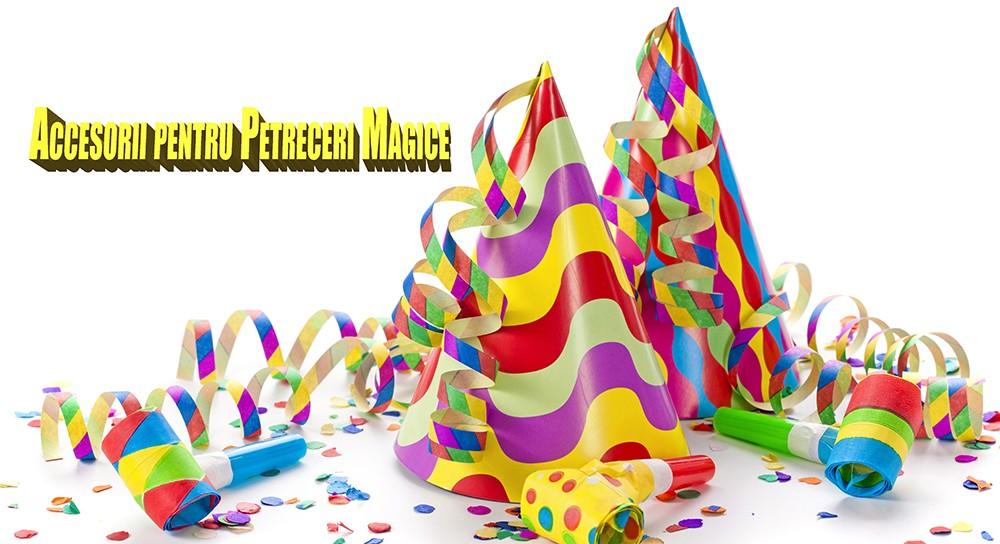 Bun Venit pe Party Magia !