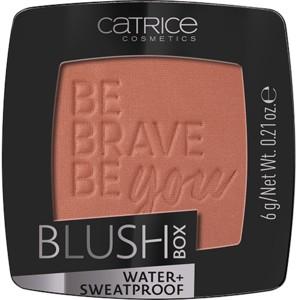 Poze Fard de obraz Catrice Blush Box 060 Bronze
