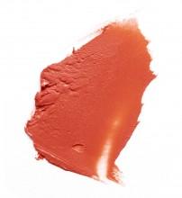Ruj mat L'Oreal Paris Color Riche Matte 227 Hype - 4.8g