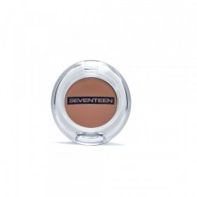 Fard de ochi Seventeen Silky Shadow Pearly No 424