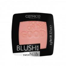 Fard de obraz Catrice BLUSH BOX 025