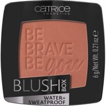 Fard de obraz Catrice Blush Box 060 Bronze