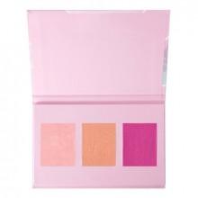 Set farduri de obraz Wet n Wild Holiday Blush Palette