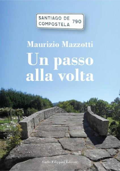 Un passo alla volta - Maurizio Mazzotti immagini
