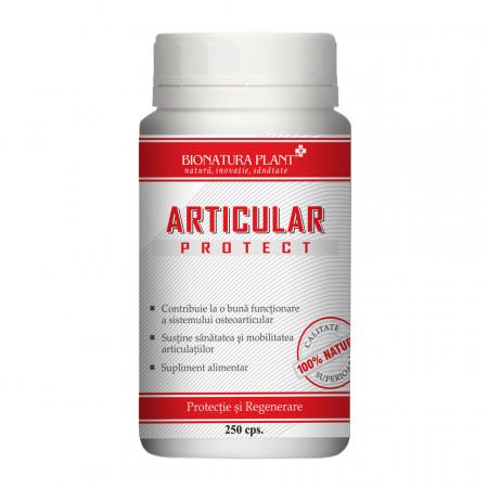Articular Protect, protectie si regenerare articulara, 250 cps