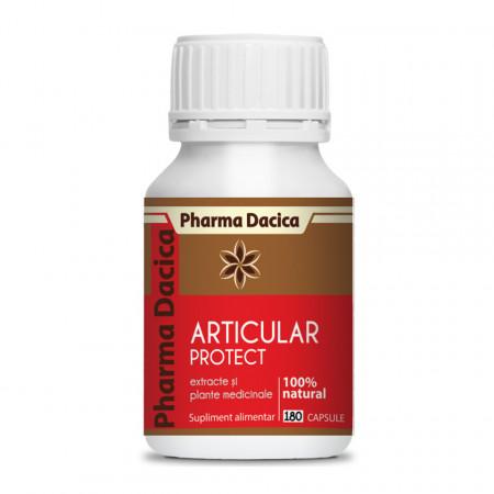 Articular Protect, regenerare articulara, 180 cps