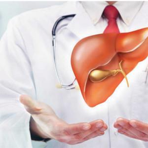 Liver, protejarea si regenarea ficatului, 180cps