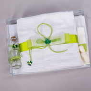 Trusou botez decor verde cu broscute NK018
