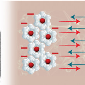Activ Zeolit Silicic, intarirea sistemului imunitar, 180 cps