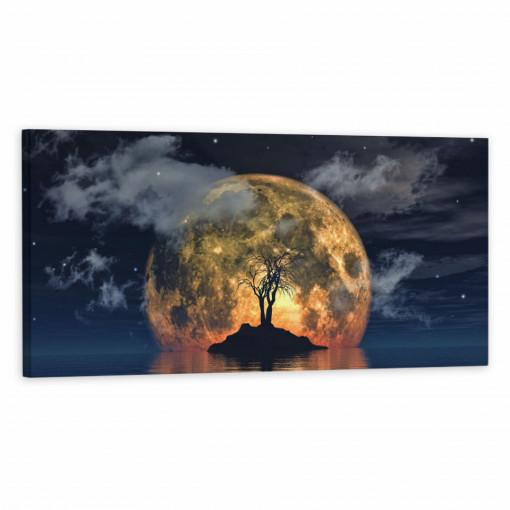 Tablou Canvas, Luna Plina