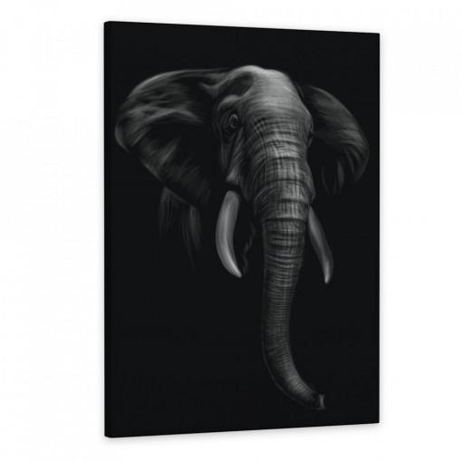 Tablou Canvas, Elefantul