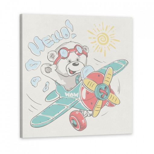 Tablou Canvas, Ursuletul cu avion