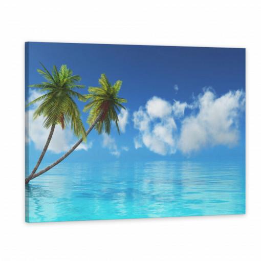 Tablou Canvas, Ocean cu Palmier