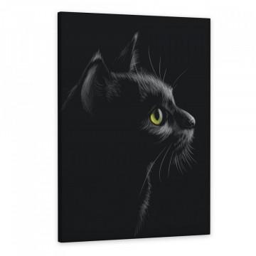 Tablou Canvas, Pisica