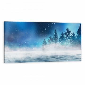 Tablou Canvas, Padure in ceata