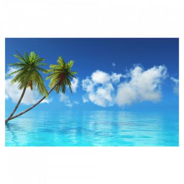Fototapet autoadeziv - Palmieri & Ocean