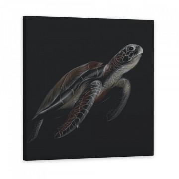Set 3 Tablouri Canvas, Peste & Testoasa & Delfin
