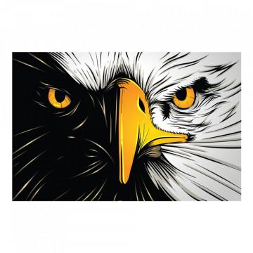 Fototapet autoadeziv - Vulturul