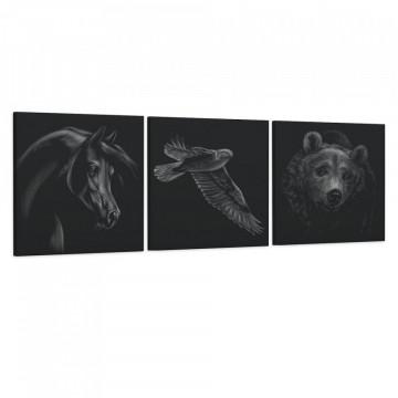 Set 3 Tablouri Canvas, Calul & Soimul & Ursul