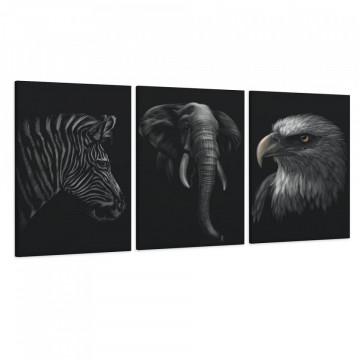 Set 3 Tablouri Canvas, Zebra & Elefantul & Vulturul