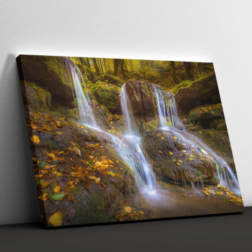 Tablou Canvas, Little Waterfall