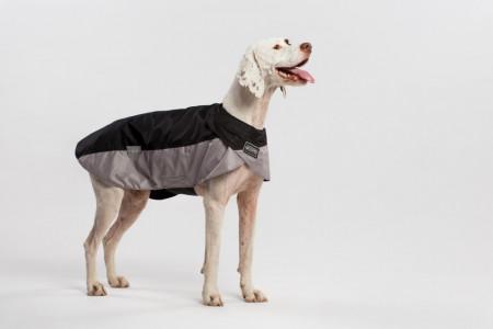 Jacheta wind Seppala - pentru câini se talie mare