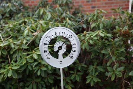 Termometru gradina
