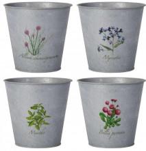 """Set 4 ghivece metalice cu flori imprimate """"Plants"""""""