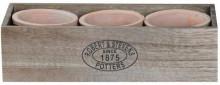 Set ghivece teracota lucrate manual-3 piese in cutie lemn