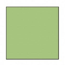 Falcon Eyes Fundo de Papel 73 Summer Green 2.75 x 11mt
