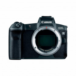 Canon EOS R + RF 24-105mm f/4-7.1 IS STM