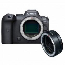 Canon EOS R6 Corpo + Adaptador Canon EF a Corpo EOS R