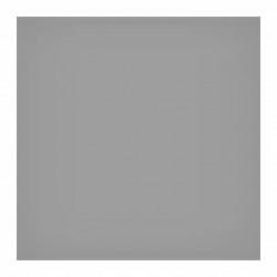Lee Filtro 150mm Standard ND 0.6 (2 Stops)
